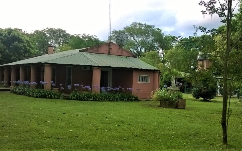 Campo · Gobernador Virasoro